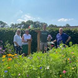 AKTIONGRUEN eröffnet ersten Kölner Insektenlehrpfad